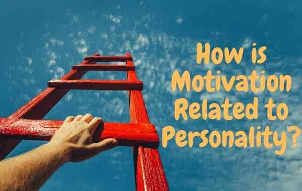 How is Motivation Related to Personality-Importance of Motivation