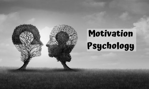 Ways to Motivate Employees and Increase Productivity