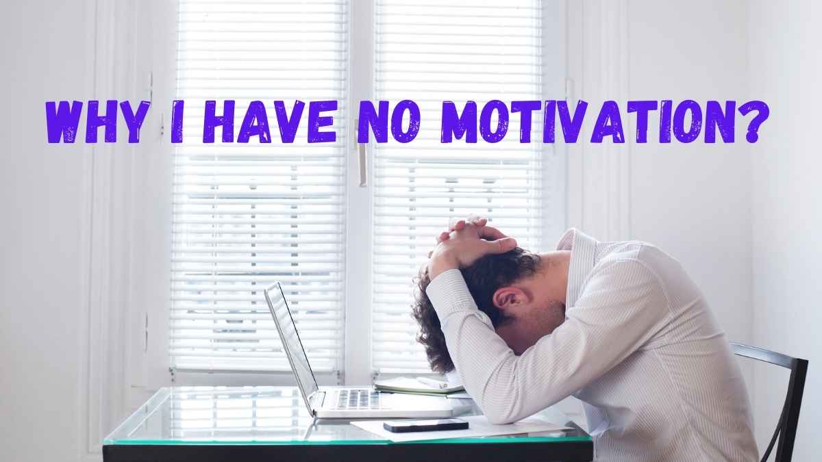 Why I Have No Motivation?